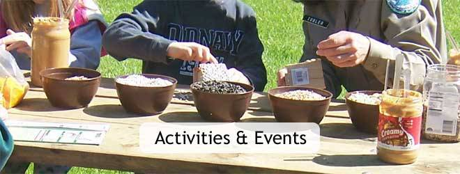 Activities & Events